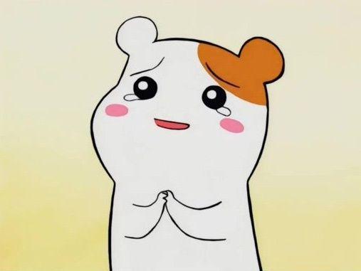 에비츄 간절 눈물 울음 부탁